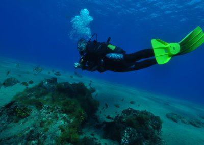 cursos de buceo en Lanzarote