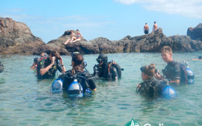 Live an unforgettable diving experience in Lanzarote