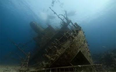 Ven al Mar Rojo con Deepteam y Divemania